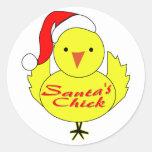 El polluelo de Santa Pegatina Redonda