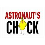 El polluelo del astronauta tarjeta postal