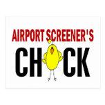 El polluelo del cribador del aeropuerto postales
