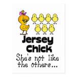 El polluelo del jersey tarjeta postal