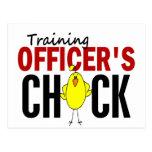 El polluelo del oficial del entrenamiento tarjetas postales