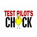 El polluelo del piloto de prueba tarjetas postales
