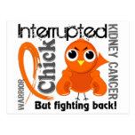 El polluelo interrumpió al cáncer de 3 riñones tarjeta postal