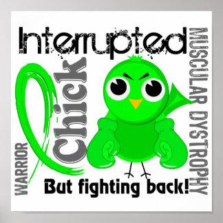 El polluelo interrumpió la distrofia muscular 3 póster