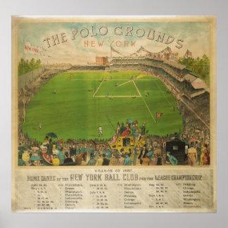 El polo pone a tierra el estadio de béisbol en 188 poster