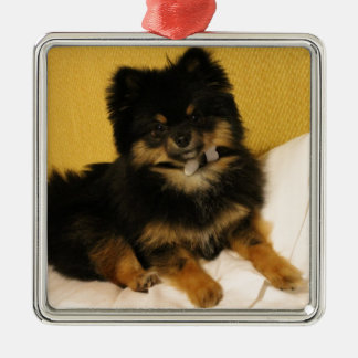 El Pomeranian más lindo Adorno Navideño Cuadrado De Metal