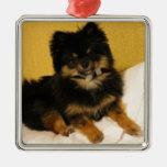 El Pomeranian más lindo Ornaments Para Arbol De Navidad