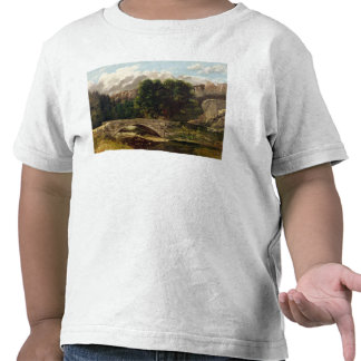 El Pont de Fleurie, Suiza, 1873 Camiseta