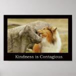 """El poster áspero """"amabilidad del collie es contagi"""