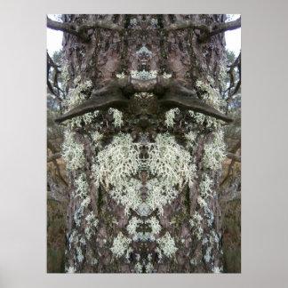 El poster barbudo del árbol del hombre