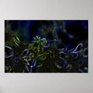 El poster de florecimiento de la flor del arce