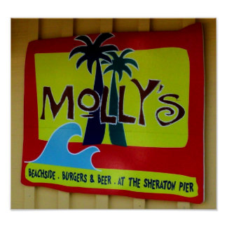 El poster de Molly