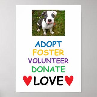 El poster del perro del rescate, adopta amor