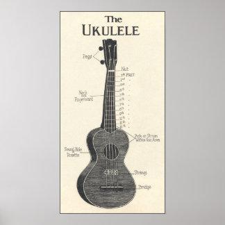 El poster del Ukulele