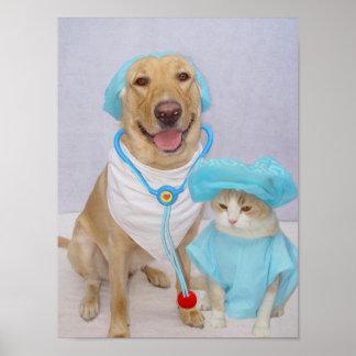 El poster del veterinario