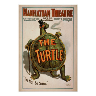 El poster del VODEVIL del juego de la TORTUGA de Z