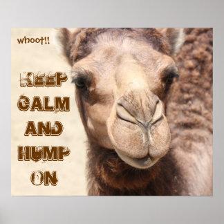 El poster divertido del camello guarda calma y la
