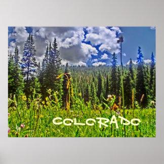 El poster escénico más forrest de Colorado