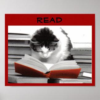 El poster instruido de la instrucción del gato