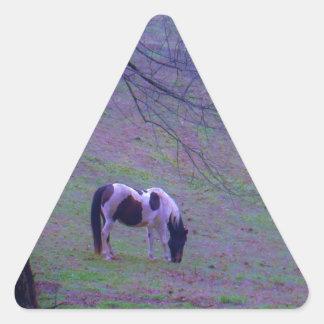 El potro pintado, caballo en aguamarina púrpura pegatina triangular