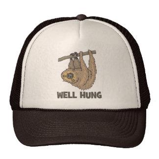 El pozo colgó el gorra del camionero de la pereza