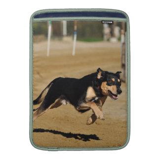 el practicar de la agilidad del perro fundas para macbook air