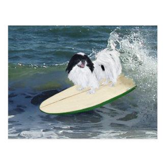 El practicar surf de Chin del japonés Postal