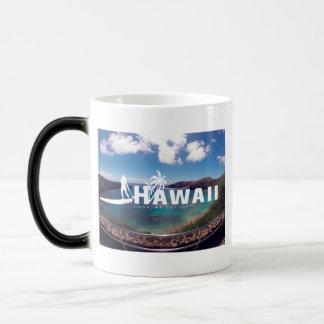 El practicar surf de Hawaii de la bahía de Hanauma Taza Mágica