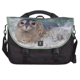 El practicar surf de la cría de foca bolsas de ordenador