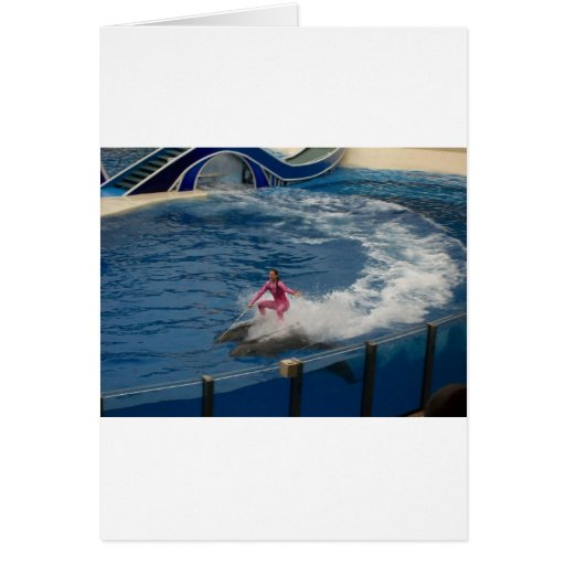 El practicar surf del delfín tarjeta