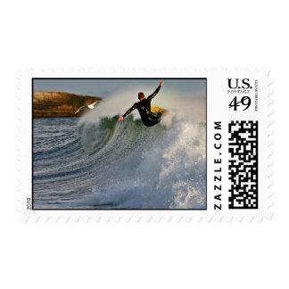 el practicar surf del labio en Santa Cruz Sello