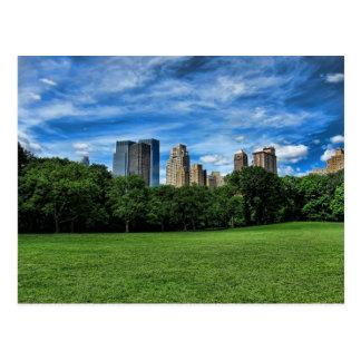 El prado de la oveja, Central Park Tarjetas Postales