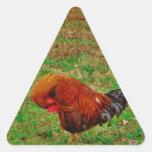 El Preening del gallo Calcomanía Triangulo