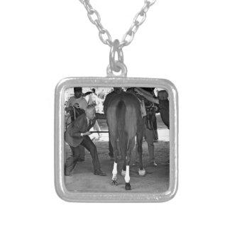 El premio de la gala gana las participaciones del collar