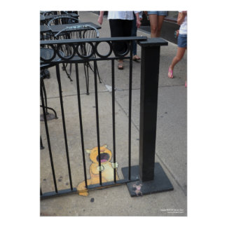El preso del gato póster
