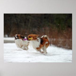 El primer día del invierno 2012 impresiones