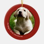 El primer navidad del perrito (labrador retriever) ornamento para reyes magos