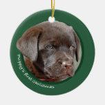 El primer navidad del perrito (labrador retriever) adorno de navidad