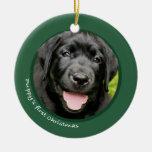 El primer navidad del perrito (labrador retriever) ornamentos de reyes magos