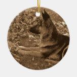 El primer navidad del perrito ornamente de reyes