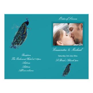 """El programa del boda de la colección del pavo real folleto 8.5"""" x 11"""""""