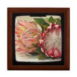 El Protea rosado florece la foto de TTV Cajas De Joyas