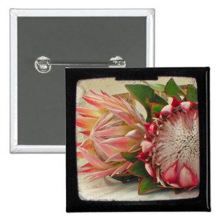 El Protea rosado florece la foto de TTV Pins