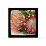El Protea rosado florece la foto de TTV Postal
