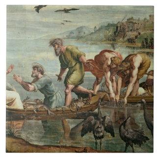 El proyecto milagroso de los pescados (dibujo anim azulejo cuadrado grande