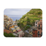 el pueblo de ladera de Manarola-Cinque Terre, Imanes Rectangulares