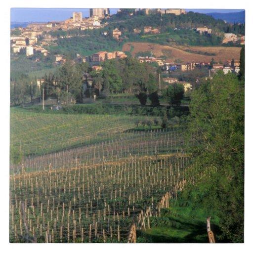 El pueblo de San Gimignano se sienta en el balance Azulejo Cerámica