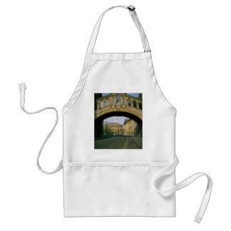 El puente de suspiros, enmarcando el Sheldonian Th Delantal
