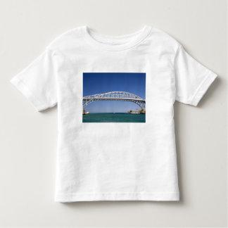 El puente del agua azul es un puente del polera