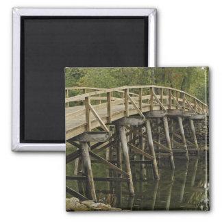 El puente del norte viejo, nacional minucioso del  imán de nevera